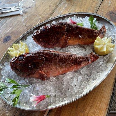 Pêche locale 9€/100g image